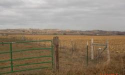 Best deal on the area with center pivot, irrigation pumps and lines, $80k value.  Compare to farm land without pivot!  Located on quiet paved road N. of Marsing.  This parcel can be purchased as package with two homes and