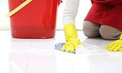 Cleaning schedules available to suit your time  -House Cleaning -Office Cleaning -Post Construction cleaning -Party clean up -Deep cleaning -Move in/Move out cleaning -Weekly -Bi-Weekly -Monthly -Occasional Visits -References Available