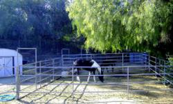 "Horse Boarding 36 ft x 36 ft Corrals $100 Without Hay or $180 With Hay (95l)-878-5392 YOU JUST RIDE ALL DAY ON MILES OF FREE HORSE TRAILS LOCATED ACROSS FROM ""THE RIVER BOTTOM"" AT THE HIDDEN VALLEY WILDLIFE REFUGE. JUST ON THE BORDER OF RIVERSIDE AND"