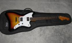 Electric Guitar with a soft case.  With amp $175.