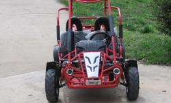 "For Sale: 2007 Hammerhead ""80"" Twister Trail Buggy.  Excellent condition, used very little.  Designed for children 8-12 years old.  6.5 HP engine, rack and pinion steering, hydraulic disc brakes, front and rear suspension."